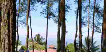 Wisata Alam Darmacaang Hill Ciamis