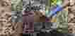 Cara Sederhana Membuat Pupuk Kompos
