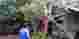 Pohon tumbang di Pamarican