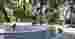 Kawanan monyet