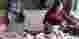 Harga Daging Ayam Potong