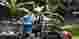 Desa Wisata di Jawa Barat