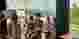 Penyuluhan KB Kecamatan Banjaranyar