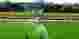 Sriwijaya FC Optimis Jadi Tuan Rumah